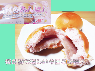 sakura_anpan_20120114_03sr.jpg